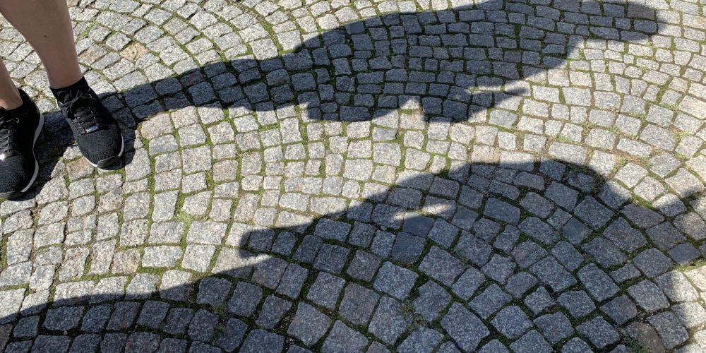 Alle im Schatten